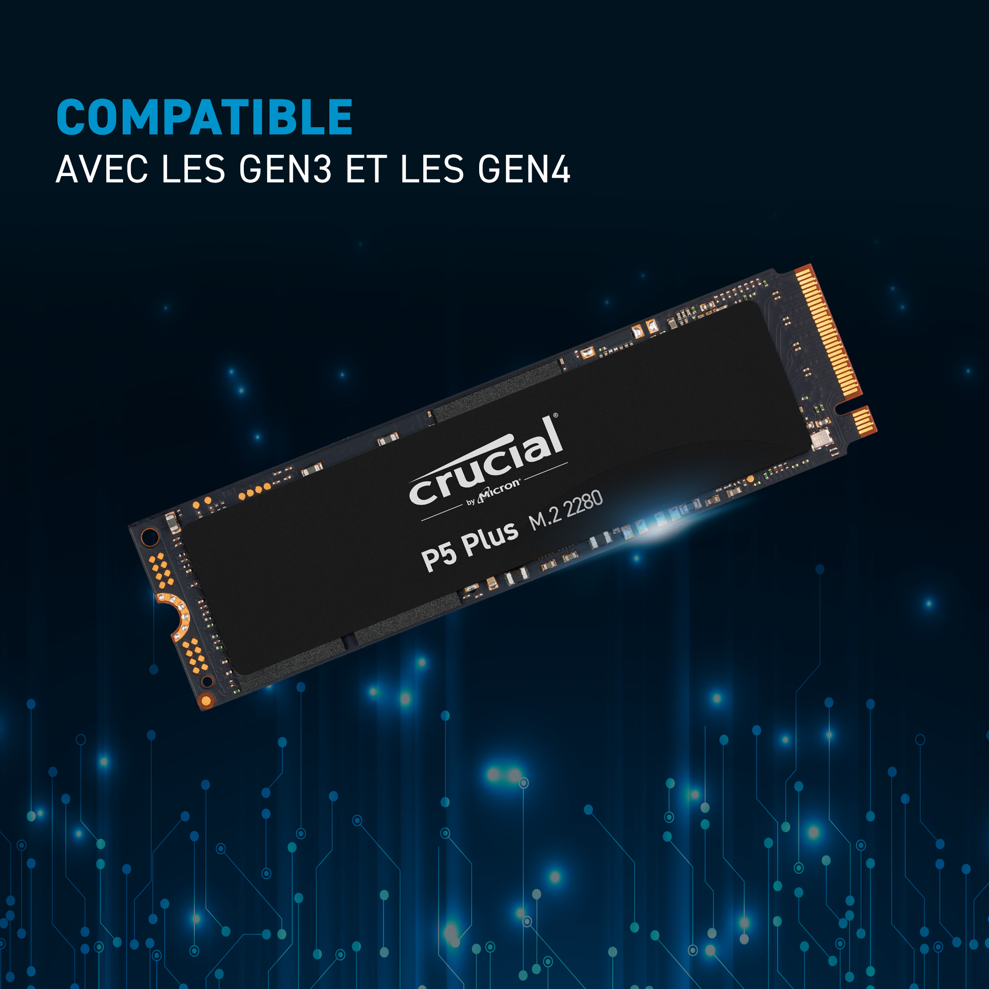 SSD Crucial P5 Plus 500Go M.2 2280SS PCIe- view 5